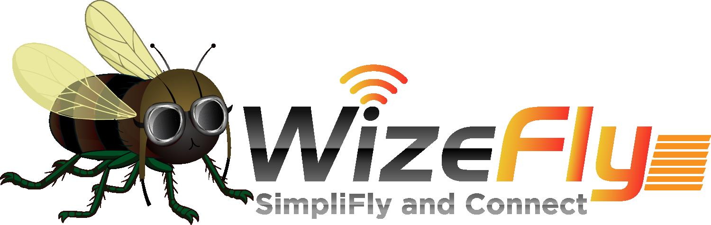 WizeFly Logo